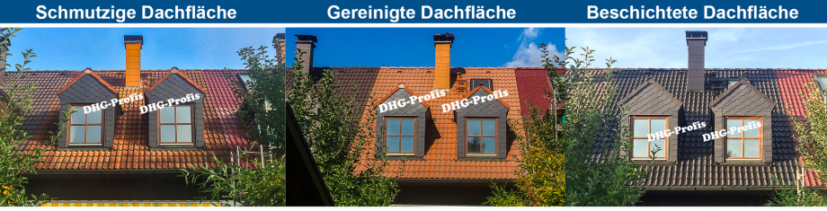 dhg_dachaufbereitung