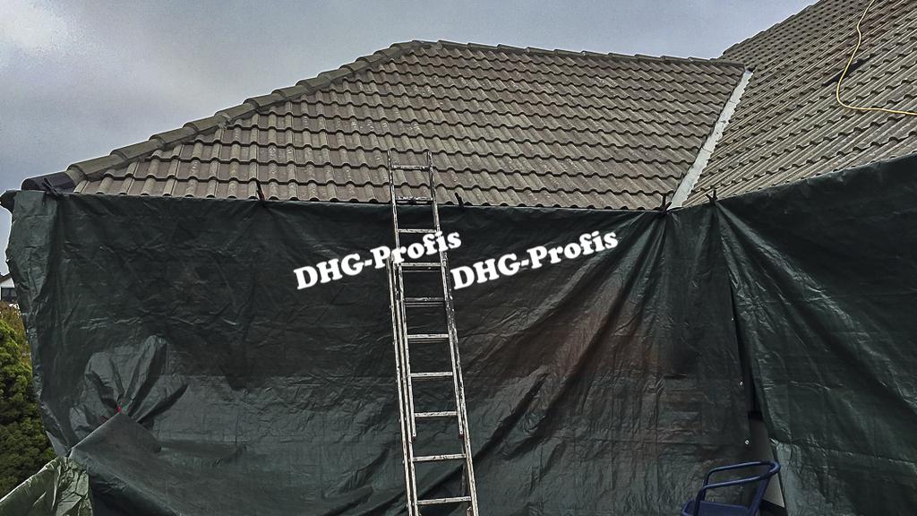 dhg_slide_dachreinigung_3
